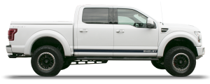 F-150 - Oxford White